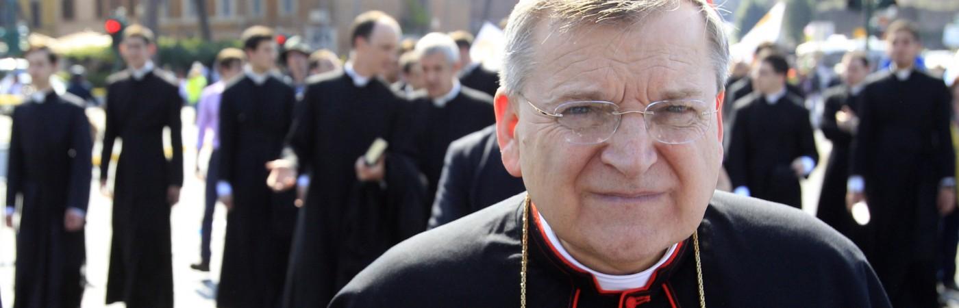 Su Eminencia el cardenal Raymond Leo Burke
